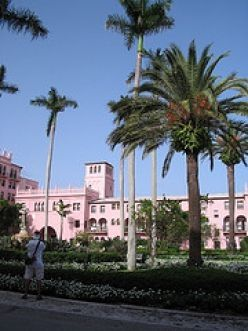 Palm Trees and Elegant Pink Exteriors