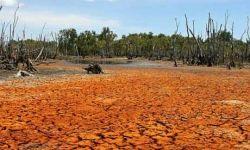 Drought in Burkina-Faso