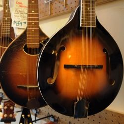 Mandolins for Sale: An A style Mandolin offers the best value for the money.