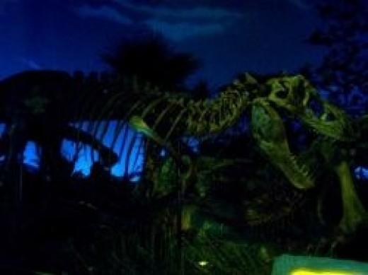 Indianapolis Childrens Museum T-Rex