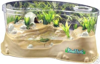Frog Habitat kit