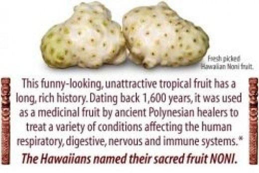 Hawaiian Noni Fruit