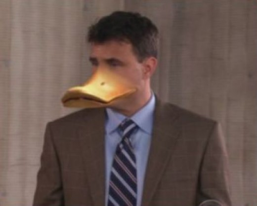 Don The Duck