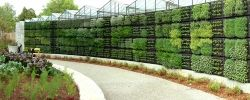 Photo Credit - Atlanta Edible Vertical Wall Garden