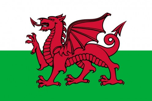The Striking Welsh Flag
