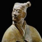 terracotta warr profile image