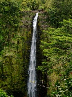 Akaka Falls, Hawaii (c) Stephanie Hicks 2008