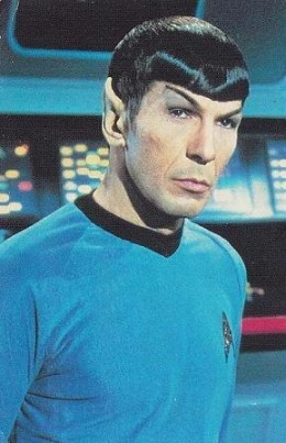 """That """"Oh really?"""" one eyebrow look that Spock gives when he wants you to know you're an idiot but is too cool to say it."""