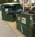 America's Answer to the Economic Collapse:  Dumpster Diving?