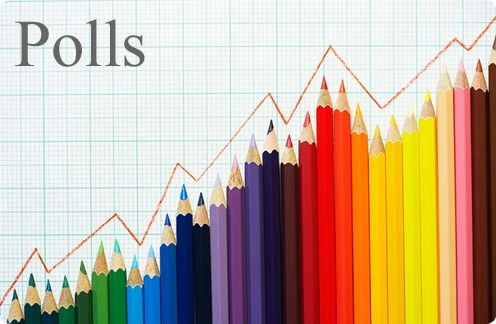 Blogging Poll