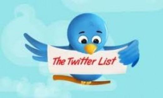 Increasing-Twitter-Followers