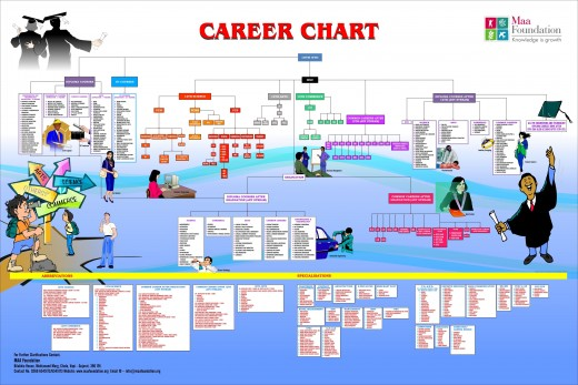 Choose your career path after looking into this chart