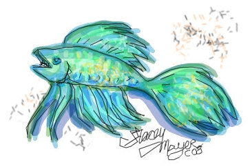 My favorite! Bright turquoise Betta tropical fish