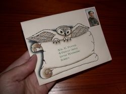 Harry Potter Party  Owl Invitations