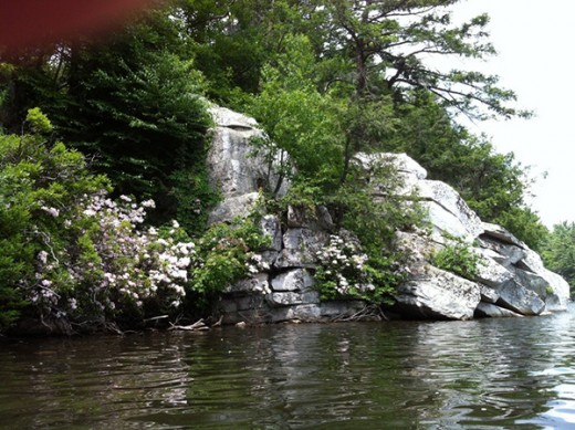 A stream between Mohonk and Minnewaska, much like the one Willa, Carley and Arrie had to cross.