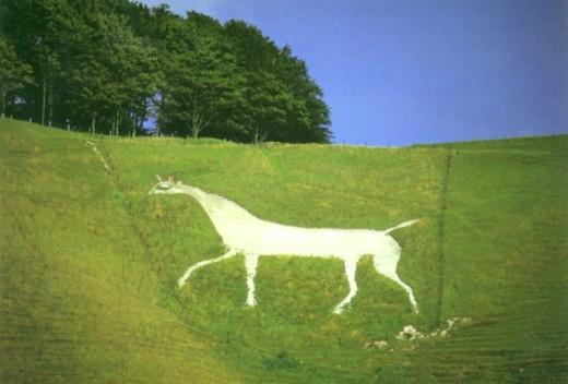 Cherill White Horse