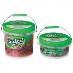 Gulp! Alive Leakproof Container