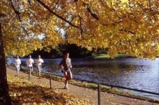 Bois de Boulogne (runningmaps.eu)