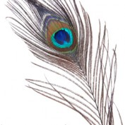Apjav LM profile image