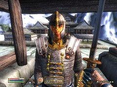 Oblivion Screenshot by Bensmcc