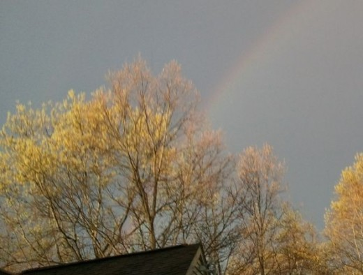 Just getting outside in my neighborhood for a walk lets me see great things like this rainbow!