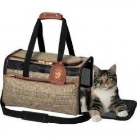 designer cat carrier