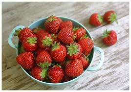 Freshly Picked Strawberries Grown Indoors