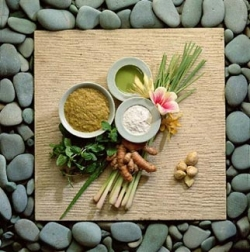 Natural ulcer treatment