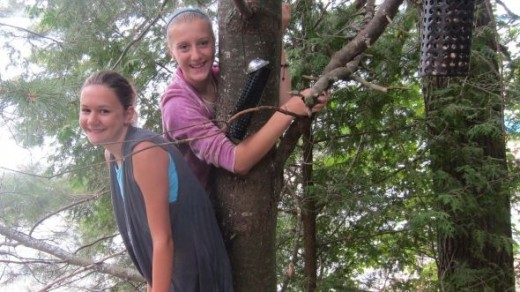 Climbing Trees in the Cottage