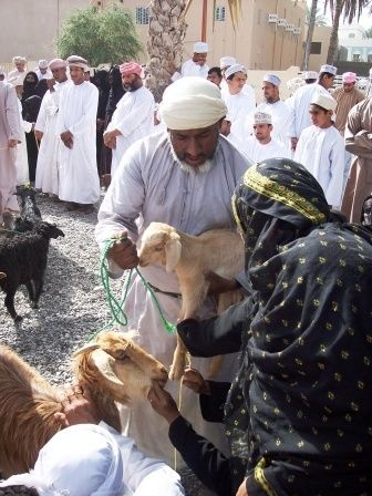 Another Oman woman choosing to buy the addition to her herd