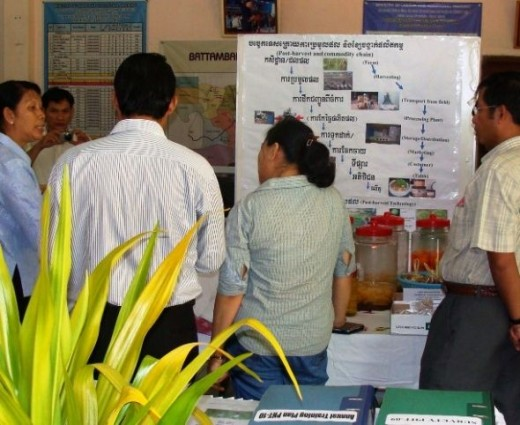Mentoring as Organization Development Intervention