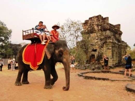 The elephant giving the tourists their round