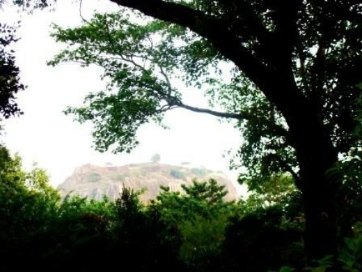 The Top of the Sigiriya Fortress