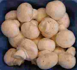Choose Fresh Mushrooms