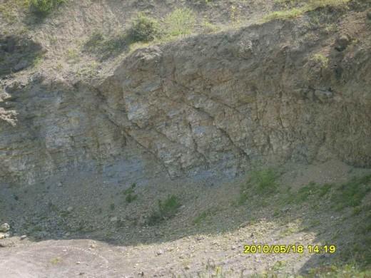 Silurian Limestone Wenlock