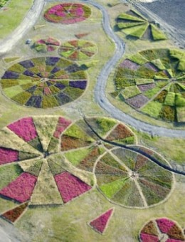 Agricultural Compositions by Jean Paul Ganem.