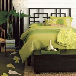 Green Themed Bedroom Decorating Ideas