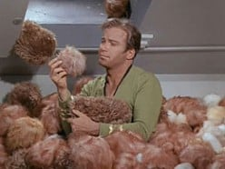 Kirk with 1,771,561 Tribbles