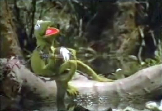 WISTFUL KERMIT: That side of Kermit that is seldom used, yet well known. It's that little layer underneath all the humor that makes him memorable.