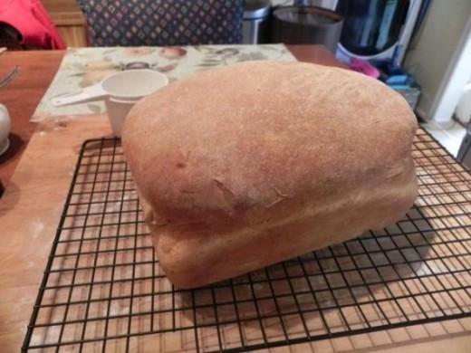 panasonic yeastpro automatic breadmaker