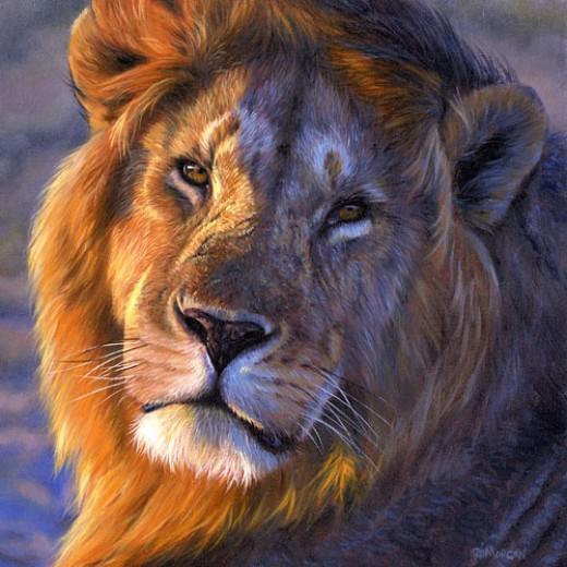Close up of a lion!Photo credit animalszooguru.blogspot.nl