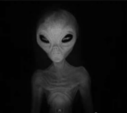 How Much Do You Know About Aliens