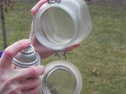Moonbeam jars