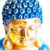 tomtalia profile image