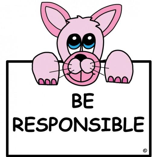 responsible rabbit, responsible, character education, character trait responsible