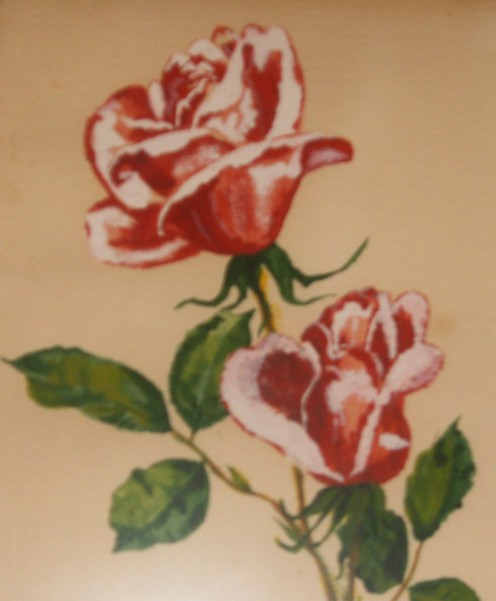 my first waterfcolor rose 1960's