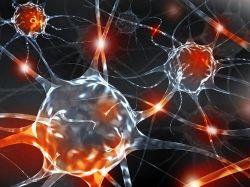Reshaping Your Brain