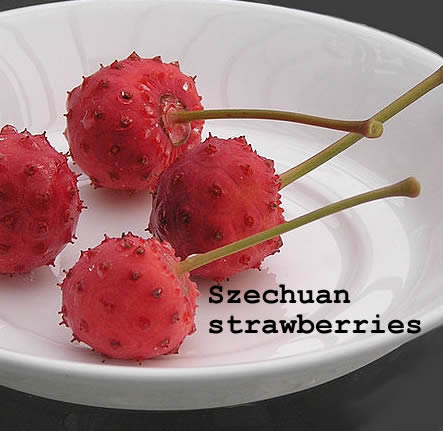 szechuan strawberries
