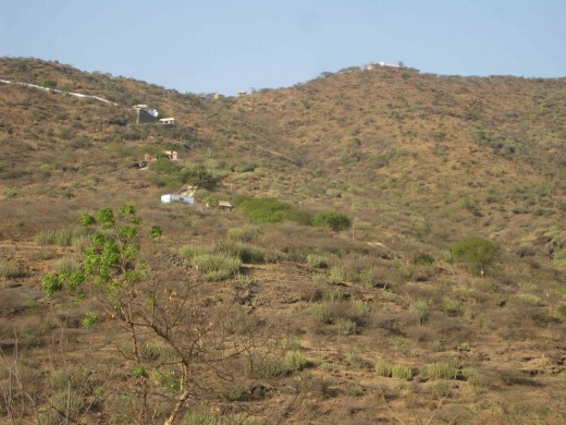 Palitana hills