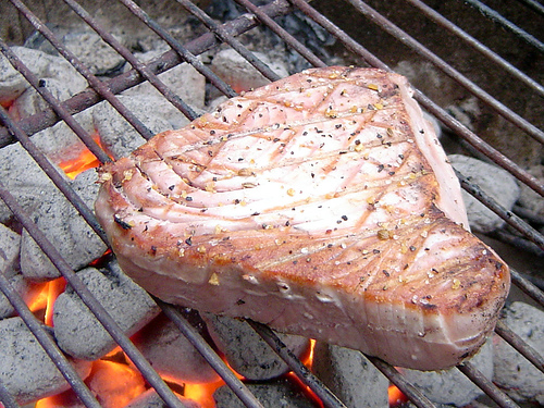 Grilled Tuna Steak (Photo courtesy by found_drama from Flickr)